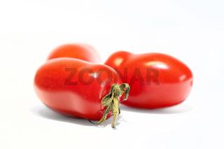 reife Roma-Tomaten (Solanum lycopersicum)