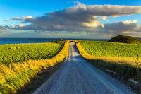 The highway in New Zealand