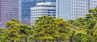 Chiyoda District Urban Day Scene, Tokyo, Japan
