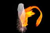 Feather and Flame #2