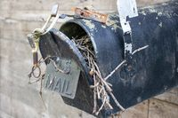 Close up of the front of an Old Abandoned country mail box with bird nest inside it on the side of a shed