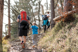 Rear view of unrecognizable young active family hiking together on mountain forest trackin in fall. Parents wearing backpacks and child toys.