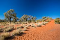 Outback Landscape in Northern Territory Australia