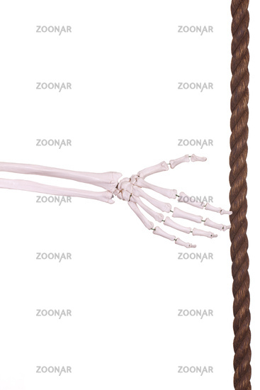 skeleton hand with old brown rope