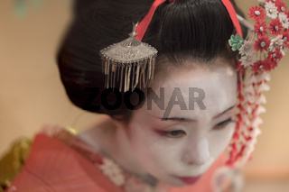 Japanese Maiko or geisha in red kimono coifed hair brooch with patterns of red and white plum blossoms