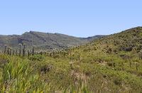 Chingaza National Natural Park