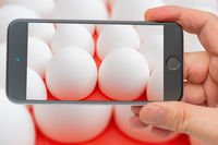 Chicken eggs on smartphone screen. White chicken eggs. Useful food product. Straight rows of eggs.