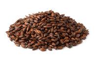 Pile  of dark malted barley seeds