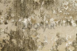 schadhafte Wand