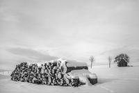 Der Holzstoss im Schnee L1001897.jpg