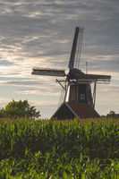 Bataaf windmill in Winterswijk in the evening sun