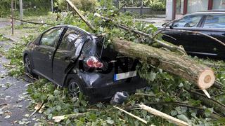 Autowrack von Baumstamm getroffen