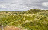 Spiekeroog in East Frisia