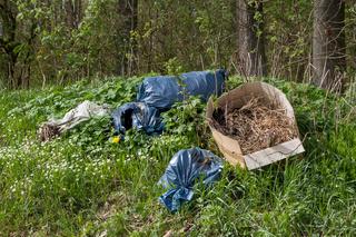 illegale Müllentsorgung in der Natur