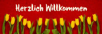 Baner Of Yellow Tulip Flowers, Red Background, Willkommen Means Welcome