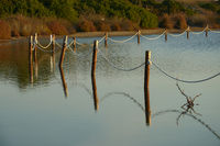Reflections of a fence sticks in the water