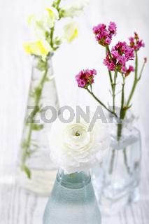 Fresh flowers in glass vases