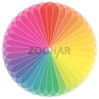 Farbkreis Blume mit vielen Farbtönen