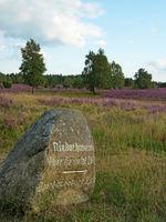 Wegweiser in der Lüneburger Heide, Niedersachsen, Deutschland