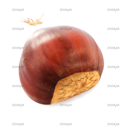 Chestnuts isolated