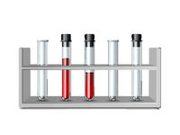Test glass tubes in rack. Equipment for Biology science, education or medical tests.