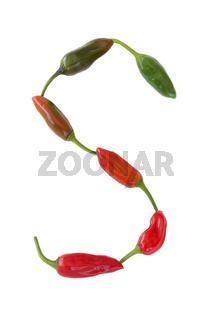 Chili - Reifestadien  -  Capsicum