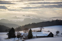 landscape with snow in winter lower austria