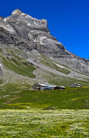 Alp Anzeindaz am Fuss des Diableretmassivs, Anzeinde, Bex, Waadt, Schweiz