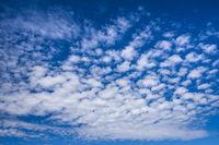 blauer Himmel mit Cumulus Wolken