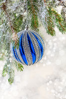 Christmas blue ball on a spruce branch.