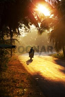 Road. Sri Lanka