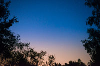 Sunset and night dark blue sky in forest