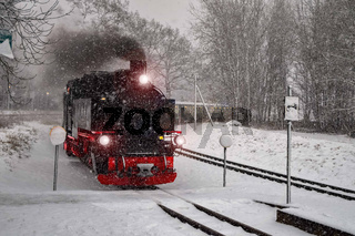 Rasender Roland  im Schneetreiben  fotolia reedy.jpg