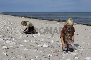 Strandgut-sammeln