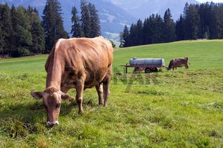 Bayrische Landschaft 039. Deutschland