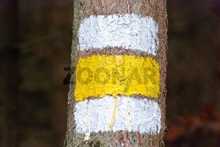 Weiß-gelb-weiße Markierung auf einem Baum