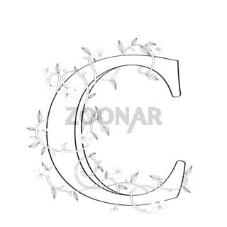 Letter C floral sketch
