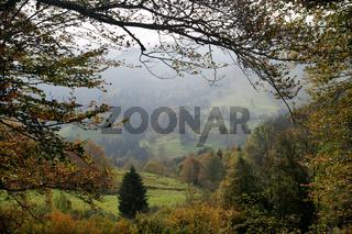 suedschwarzwald