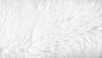 White fur background close up view. Banner