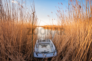 Small boat in the reeds at neusiedlersee