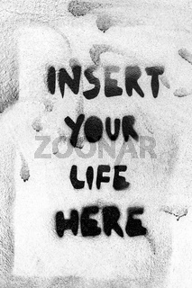 Insert your life here