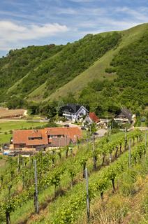 Alt-Vogtsburg, Kaiserstuhl, Deutschland