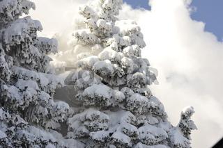 Winter in Harz Brocken.