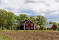 Altes rotes Bauernhaus in Schweden