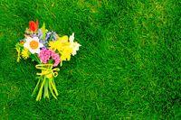 Blumenstrauß auf dem Rasen im Frühling