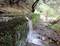 Madeira Levada 25 Quellen