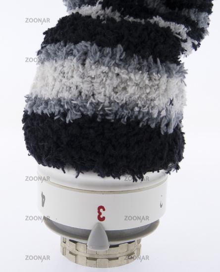 Thermostat mit Wollmuetze, Regler, Kopf