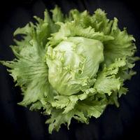 Head of Lettuce on black background