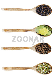 Different kinds of seasoning