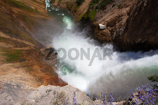 The famous Lower Falls in Yellowstone National Park
